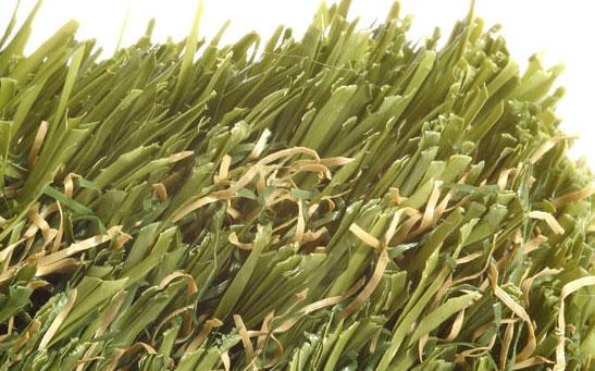 Regent's park artificial grass