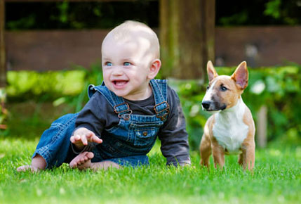 Child and Pet enjoying on an artificial grass