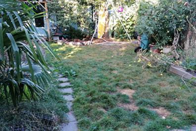 garden before artificail grass installation